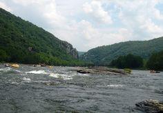 tubing shenandoah river