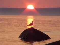 couchers de soleil - Bing Images