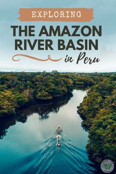 Want to visit the Amazon River? Consider a trip to Iquitos, Peru! See all the animals, experience the jungle, and travel down the river by staying in a lodge!