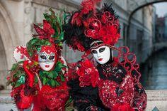 Cherries and roses at Carnival of Venis ~ MatthiasD700