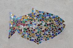 Raymond Island fish