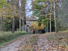 Pieve Vecchia charming house in tuscany,... - HomeAway Castelfiorentino