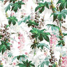 CASTANEA Wallpaper White