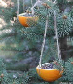 These orange-rind ornaments are beyond simple: Scoop the fruit, punch holes for twine, and fill with... - Courtesy sherisilver.com