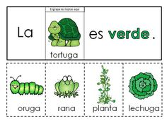 Los colores Spanish colors flip books This is a set of 22 flip books. Each book comes in color and black and white. There are two color books for each color. Preschool Spanish, Spanish Lessons For Kids, Learning Spanish For Kids, Spanish Basics, Elementary Spanish, Spanish Activities, Spanish Language Learning, Spanish Classroom, Color Activities
