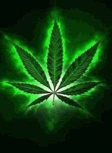 spark up(don saulo beats) by S. Weed Wallpaper, Skull Wallpaper, Marijuana Leaves, Funny Weed Pictures, Car Pictures, Weed Backgrounds, Weed Posters, Wallpaper Quotes, Dope Wallpapers