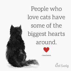 :) Cat lovers have the biggest hearts! <3