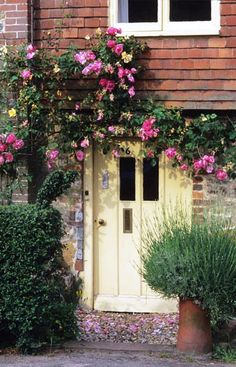 rambling roses & yellow door  <3