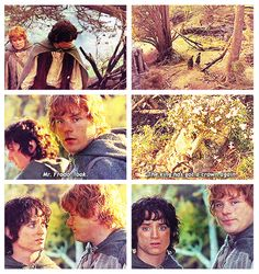 The Lord of the Rings: The Return of the King. Look, Mr. Frodo, he's got a crown again. Sniff