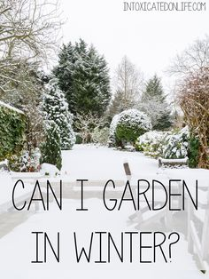 "Intoxicatedonlife.com responds to the question ""Can I garden in winter?"""