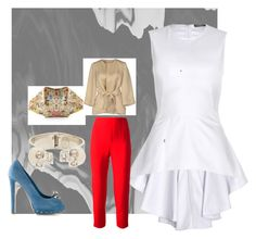 """M.#007"" by alleonam ❤ liked on Polyvore featuring Alexander McQueen and P.A.R.O.S.H."