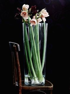 - Furniture and Home Furnishings Long stems in a tall glass vase, like BLADET, make a striking and elegant arrangement.Long stems in a tall glass vase, like BLADET, make a striking and elegant arrangement. Ikebana, My Flower, Fresh Flowers, Beautiful Flowers, Tall Flowers, Flowers Vase, Indoor Flowers, Flowers Decoration, Flower Bouquets