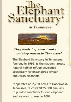 Please check out this site. The elephant sanctuary in Tennessee rescues performing elephants.  It will warm your heart.  They are trying to rescue 100 more elephants and need our help!