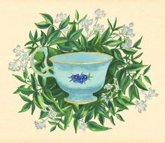 Botanical illustration, vintage item  #illustration #illustrator #botanical #drawing #floral #vintage #item #cup #english