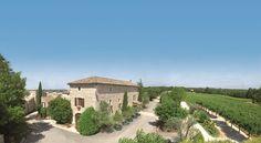 Vue panoramique: le coeur du Mas au milieu d'un domaine viticole de 40 hectares #paysage #vigne #lavande #olivier #pecher #hotel #verdure #blue #sky #vert #green #charme #gard #ardeche #provence #sud #france
