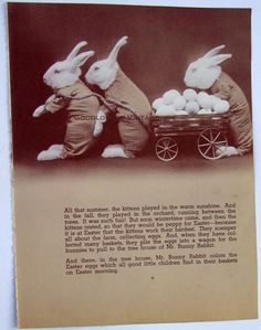 Easter Bunny and Pals with Cart of Eggs, Vintage Anthropomorphic Photo of Rabbits,1960s Page from Children's Easter Book
