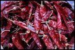 It doesn't get much better, dried chilli peppers from South America.  No additives makes for a pure meal.