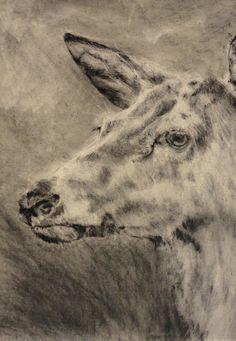 Charcoal, & Graphite on Rives BFK paper  2011 www.alexander-landerman.com