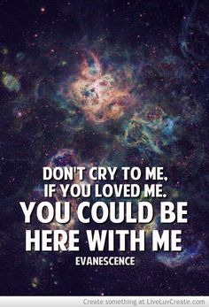 Evanescence :3 (Lyrics are from Call Me When You're Sober)