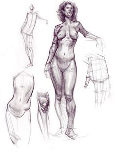Exceptional Drawing The Human Figure Ideas. Staggering Drawing The Human Figure Ideas. Human Figure Drawing, Figure Sketching, Figure Drawing Reference, Anatomy Reference, Life Drawing, Female Drawing, Figure Drawings, Drawing Step, Anatomy Sketches