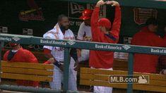 New trending GIF on Giphy. mlb baseball ballet cardinals st louis cardinals. Follow Me CooliPhone6Case on Twitter Facebook Google Instagram LinkedIn Blogger Tumblr Youtube