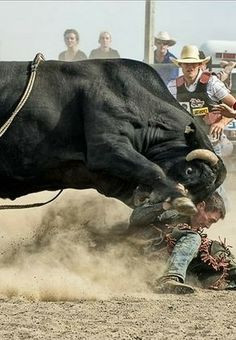 Feel the Force - Dirt, Snot an All. Rodeo Cowboys, Real Cowboys, Cowboy And Cowgirl, Cowboy Pics, Western Riding, Western Art, Cowboy Photography, Rodeo Events, Bucking Bulls