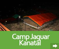 Camp kantal is that the best placed camp in Danaulti Uttarakhand. It is compared to a paradise in matters of Natural beauty and also the comforts that it's to supply to any or all the guest frequenting this small city on the the Himalaya.