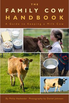 From purchasing the right cow to the proper methods of milking by hand, author Philip Hasheider explains the basics of miking the family cow.