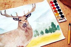 Deer once again