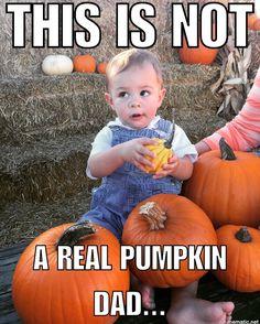 Baby Acne, Best Probiotic, Diaper Rash, Infant, Pumpkin, Babies, Kids, Young Children, Baby