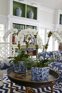 Blue & White... Love splash of green in bookcases...also lighting