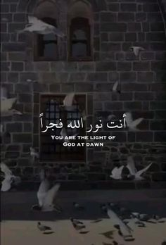 Islam Quotes About Life, Quran Quotes Love, Life Quotes, Muslim Book, Muslim Pray, Best Islamic Quotes, Islamic Inspirational Quotes, Best Love Lyrics, Cute Song Lyrics
