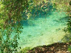Detalle de la imagen de -Paraje de las Fuentes del Río Algar, provincia de Alicante