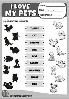 Hello Kids 1 - my pets worksheet http://eslchallenge.weebly.com/hello-kids-1.html