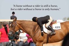 There's nothing more special than the bond between a horse and rider. #AQHAProud http://www.aqha.com/