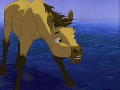 Spirit stallion of the cimarron pics | Imagini Spirit: Stallion of the Cimarron (2002) - Imagini Spirit ...