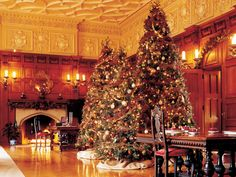 Christmas at Biltmore Estate in Asheville N.C. http://www.hgtv.com/decorating-basics/our-favorite-christmas-decorating-ideas/pictures/page-2.html?soc=pinterest