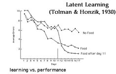 When reward added later, after initial period of no reward for behavior, maze learning was better than in standard operant conditioning techniques in which they were reward all along.