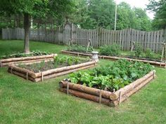 LOVE these raised beds! - #Beds #lOVE #Raised