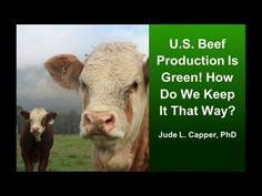 U.S. Beef Production is Green - Jude Capper, Ph.D.