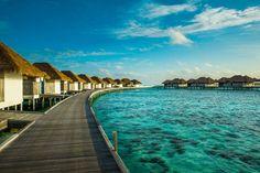 Maldives Resort   COMO Maalifushi, The Maldives Official Site