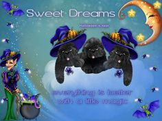 Newfoundland, Sweet Dreams, Halloween, Dogs, Movie Posters, Movies, Fictional Characters, Art, 2016 Movies