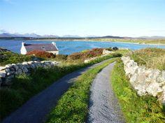 "40 minute loop walk at Moyrus/Dooyeher . Start/Finish at Moyrus Pier Map at ""Red Sails"" Connemara, Walks, Trek, Sailing, Ireland, Heaven, Country Roads, Map, Beach"