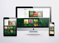 FitoHorm weboldal » Creatum Reklám- és Webstúdió | Reklám, webdesign, arculat tervezés, logó tervezés, grafikai tervezés, marketing, banner, 3D, animáció, termékcsomagolás tervezés, reklámkampány tervezés, fotózás, nyomdai kivitelezés, webshop, banner, edm, kereső optimalizálás, Adwords kampány, reklámstúdió, kreatív tervezés