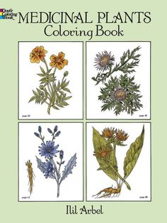 Informative fun-to-color guide features 44 botanically accurate drawings of such plants as foxglove, belladonna, mayapple, valerian, dandelion, chamomile, quinine...
