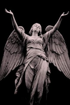 FOUTE BOEL - I don't repost any photo that contains a hidden. Sculpture Art, Angel Statues Sculpture, Renaissance Art, Cemetery Art, Sculpture, Art, Angel Art, Aesthetic Art, Angel Sculpture