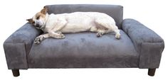 Yes, its furniture for your pooch
