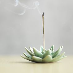 Succulent incense holder ☽☯☾magickbohemian