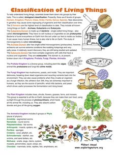 Classification of Living Things. Find this on Exploringnature.org, is a science for K-12 with 5,000 pages vibrantly illustrated science models, posters, activities, experiments, investigations, movies, games and worksheets. • Learn to draw animals, make habitat murals, dioramas, posters and nature trails. • Use the test bank, glossary and Next Generation of Science Standards resources.