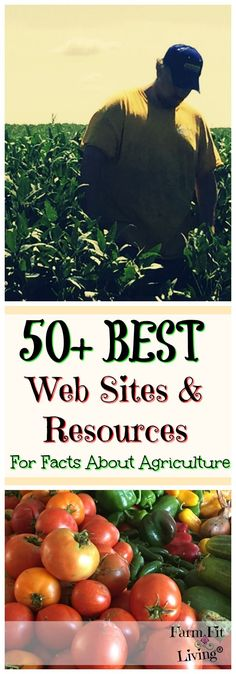 Best Facts About Agriculture Web Sites and Resources | Best Web Sites and Resources to find facts about agriculture | National Agriculture Day